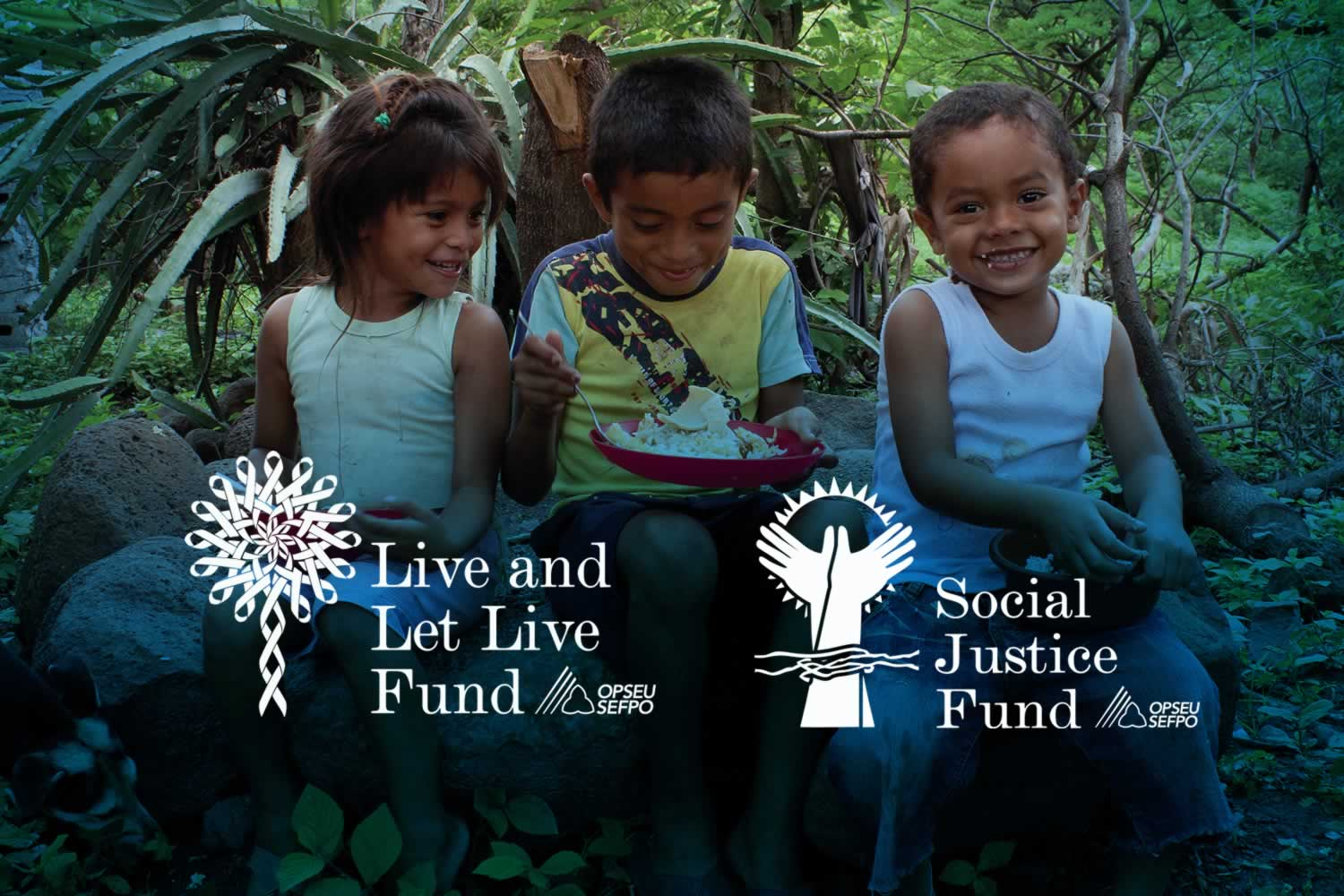 OPSEU Live and Let Live Fund, Social Justice Fund