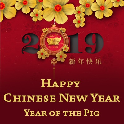 Happy Chinese New Year, year of the pig, 2019