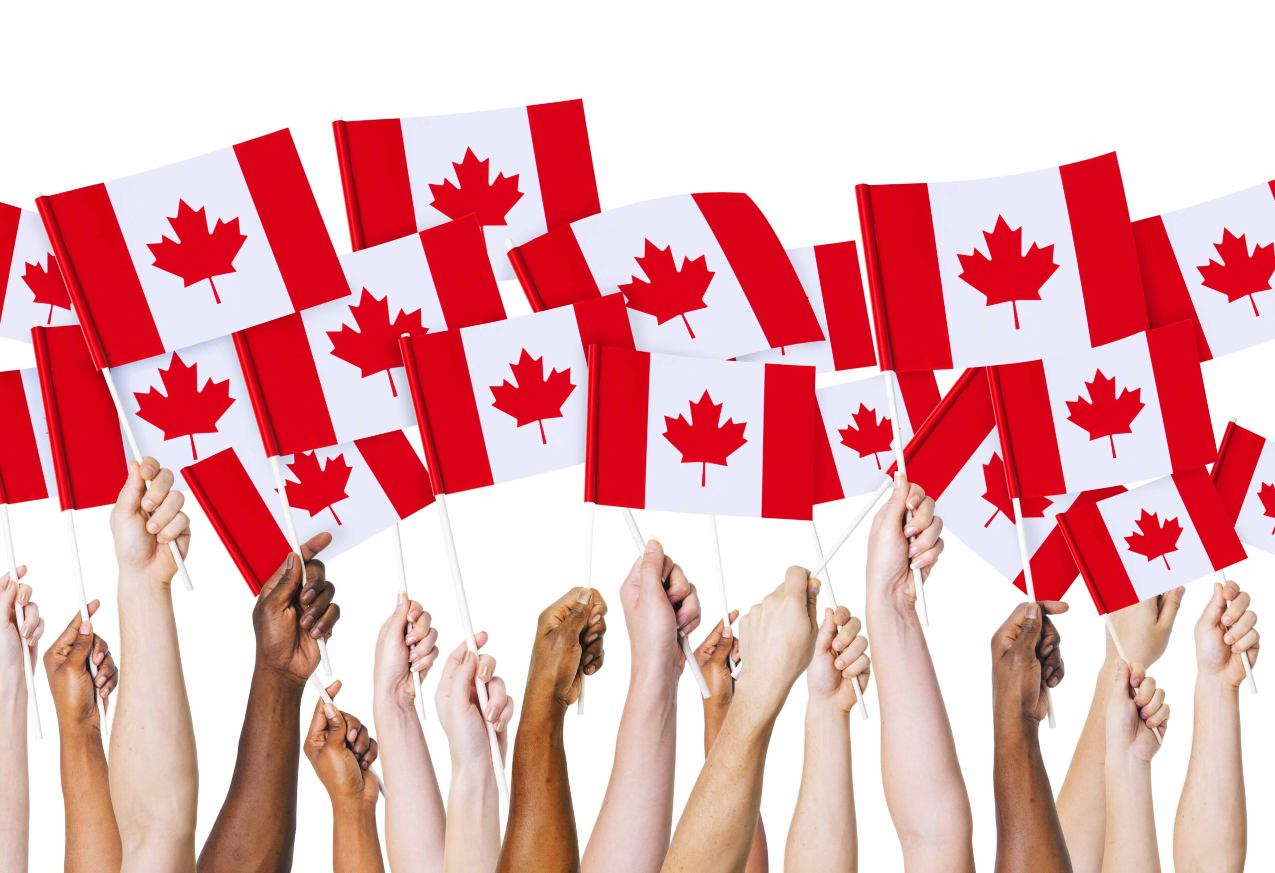 Multiple people holding up Canadian flags